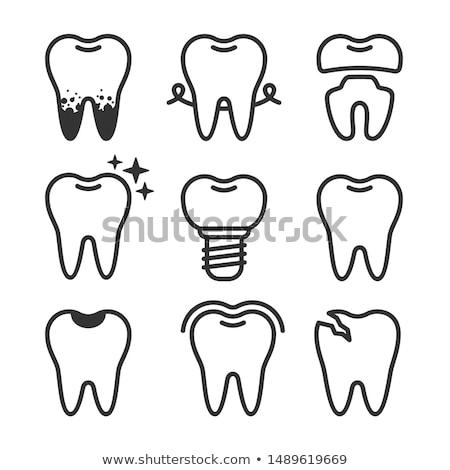 Dentista dente proteção vetor ícone assinar Foto stock © pikepicture