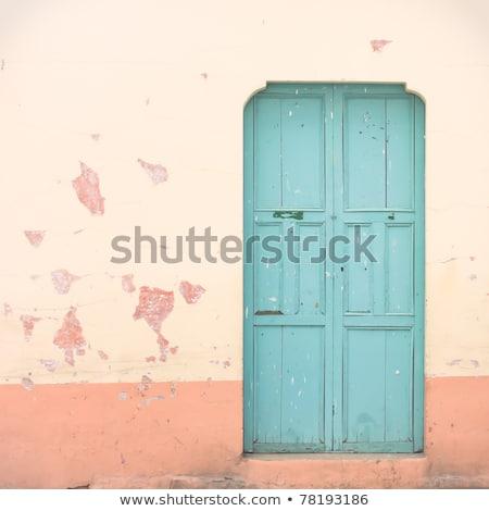 Vecchio legno rosa porta grunge texture casa Foto d'archivio © marylooo