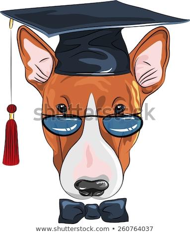 desenho · animado · cão · pós-graduação · ilustração · branco · sorrir - foto stock © bennerdesign