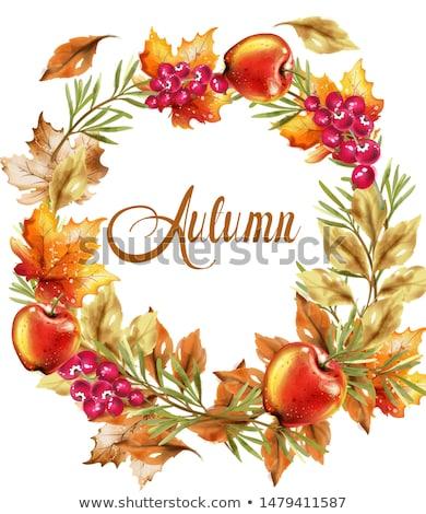 ősz aratás koszorú kártya vektor ősz Stock fotó © frimufilms