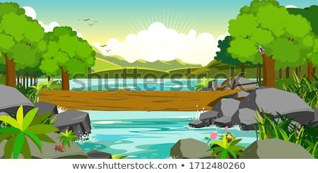 Mountain stream river with stones Stock photo © dariazu
