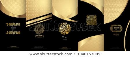 Vector ingesteld luxe collectie Stockfoto © blue-pen