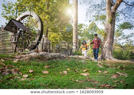Család kirándulás apa fiú sétál erdő Stock fotó © galitskaya