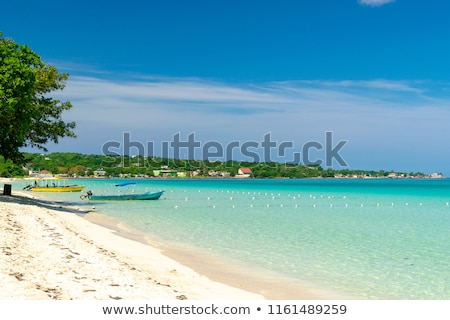 View along Seven Mile Beach Stock photo © jsnover