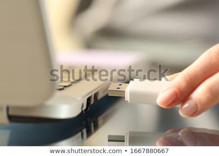 Usb пер дисков изолированный служба ключевые Сток-фото © gant