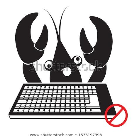 Homár karom számítógép billentyűzet internet számítógép bűnöző Stock fotó © devon