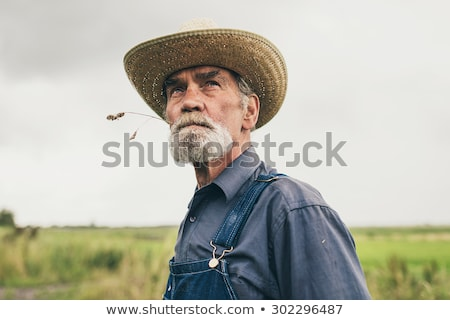 Farmer chewing a straw in a field Stock photo © photography33