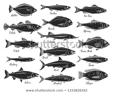 Сток-фото: силуэта · рыбы · морем · знак · черный · рыбалки