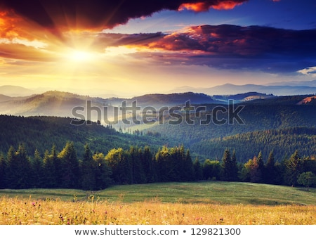 Beautiful mountain landscape - Carpathians Stock photo © pzaxe
