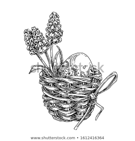 Easter basket with flowers, vector illustration  Stock photo © carodi