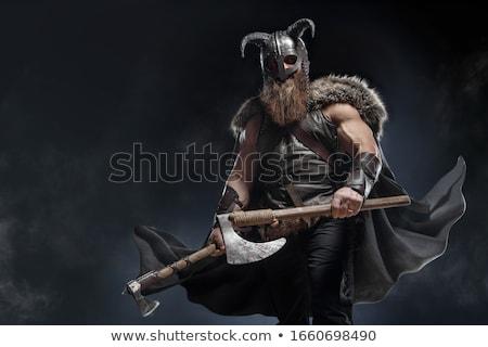 Viking's battle axe Stock photo © oorka