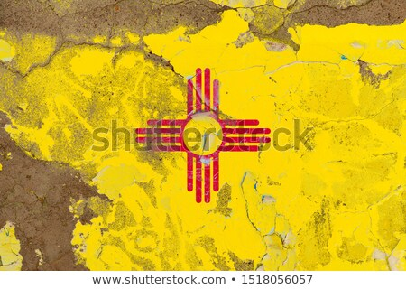 grunge flag of us state of new mexico on brick wall painted with stock photo © vepar5