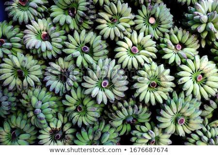 Green banana for sale on a Vietnamese market Stock photo © michaklootwijk