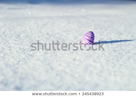 イースターエッグ 雪 カラフル スペース 卵 背景 ストックフォト © franky242