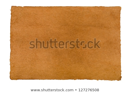 Brown Daphnepaper With Leathery Texture Photo stock © Zerbor