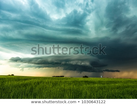 Tempête domaine texture soleil paysage fond Photo stock © saddako2