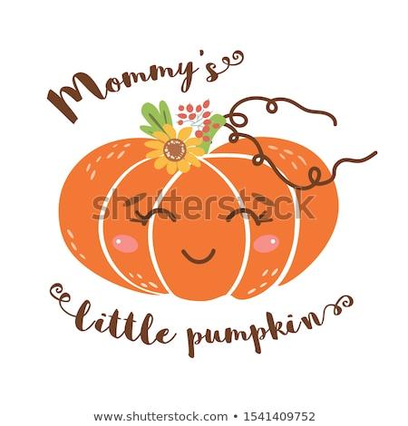 Cute little pumpkins Stock photo © photochecker