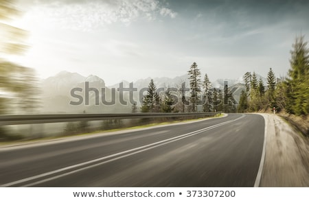 Weg bos blauwe hemel hemel boom Stockfoto © chesterf