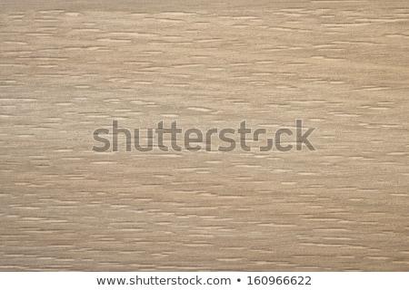 Cortina oak Wooden texture Stock photo © 3pphoto31