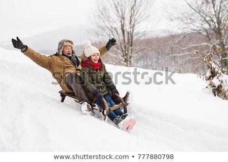 Grootvader slee voorbereiding brandhout winter Stockfoto © karelin721