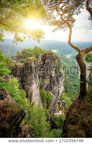 panorama saxony switzerland stock photo © w20er