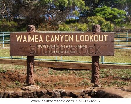 Canyon eiland vulkanisch Rood rotsen Stockfoto © searagen