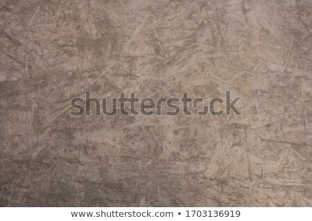Surface of the slab of cement and wood chips Stock photo © cherezoff