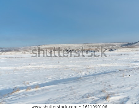 Winter steppe Stock photo © Novic