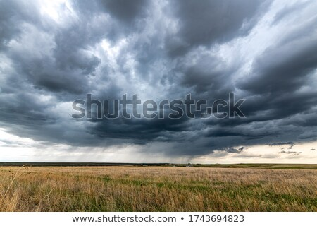Vidéki út Colorado préri keleti tavasz Stock fotó © PixelsAway