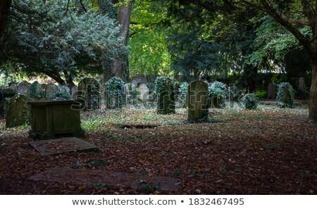 Velho lápide folhas verdes cemitério escócia grama Foto stock © michaklootwijk