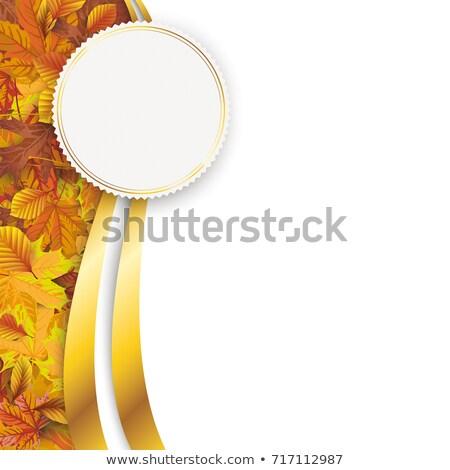 Autumn Flyer Oblong Emblem Stock photo © limbi007