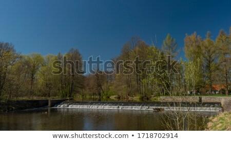 Blanice river in Bohemia Stock photo © ondrej83