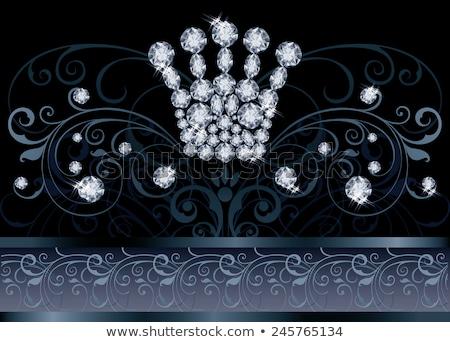 Brillante reina corona vip tarjeta de felicitación moda Foto stock © carodi