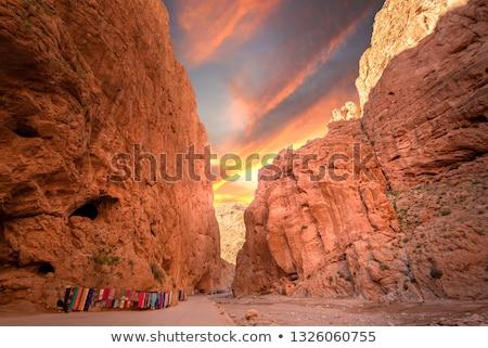 landscape of deep gorges  Stock photo © OleksandrO