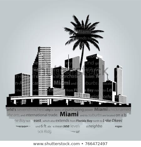 Miami · Florida · sziluett · város · sziluett · égbolt - stock fotó © blamb