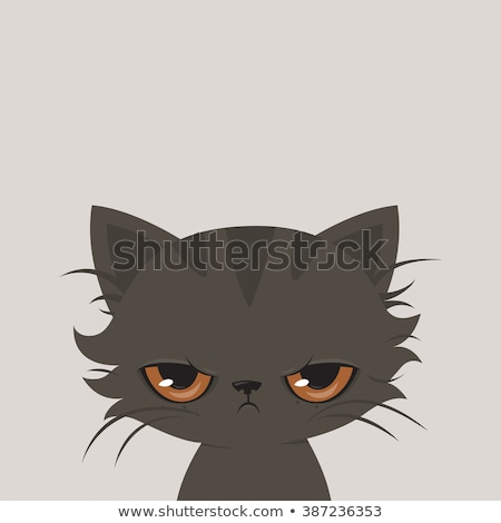 Boy with an angry cat Stock photo © krugloff