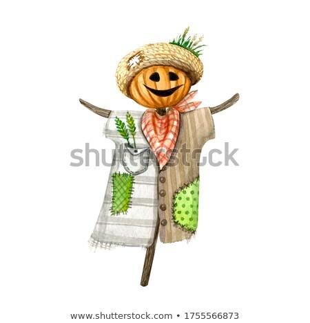 male scarecrow Stock photo © adrenalina