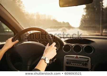 női · kéz · autó · kormánykerék · nő · vezetés - stock fotó © stevanovicigor