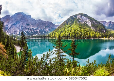 footpath in south tyrol stock photo © manfredxy