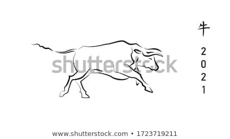 vaca · cabeça · preto · e · branco · comida · cara · arte - foto stock © rastudio