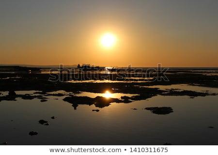 Seashore Silhouette Stock photo © artfotodima