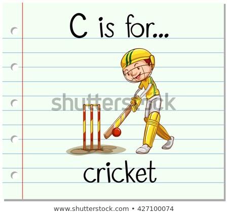 буква С крикет мяча иллюстрация спорт фон Сток-фото © bluering