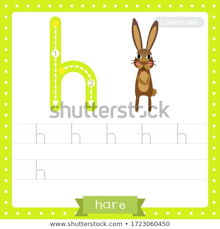 Flashcard letter H is for hare Stock photo © bluering