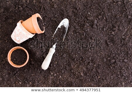 Three small clay pots beside spade in dirt Stock photo © ozgur