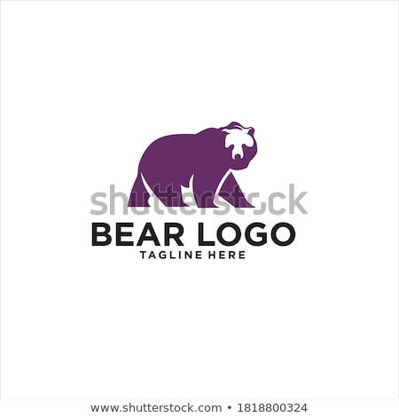 Big angry bear Stock photo © bluering