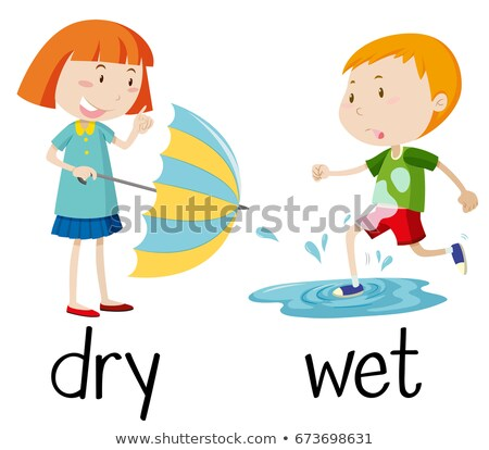 Opposite wordcard for dry and wet Stock photo © bluering