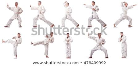 Karate játékos gyakorol portré aréna férfi Stock fotó © wavebreak_media