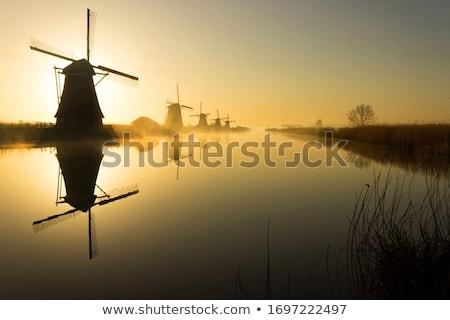 Holland szélmalom öreg Hollandia égbolt fű Stock fotó © JanPietruszka