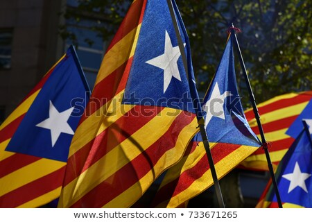 some estelada, the catalan pro-independence flag, against the sk Stock photo © nito