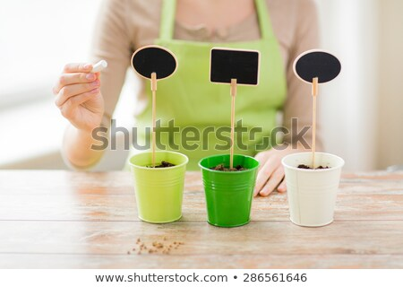 close up of woman with soil in pots and nameplates Stock photo © dolgachov